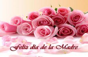 DiaDeLaMadre814