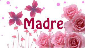 Fotos Dia de la Madre