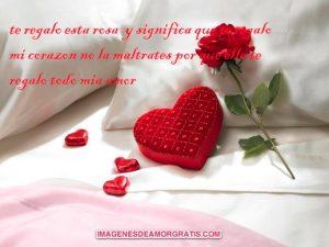 Imagenes de amor con flores2