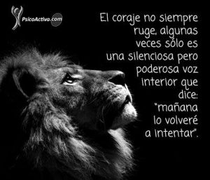 frases-exito1.jpg.pagespeed.ce.ncEEOxpaNx