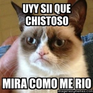 1470162543_memes-con-frases-chistosas-para-compartir-por-twitter