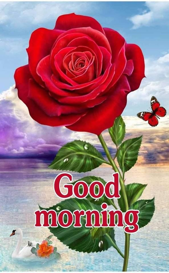 Good morning flowers quotes images