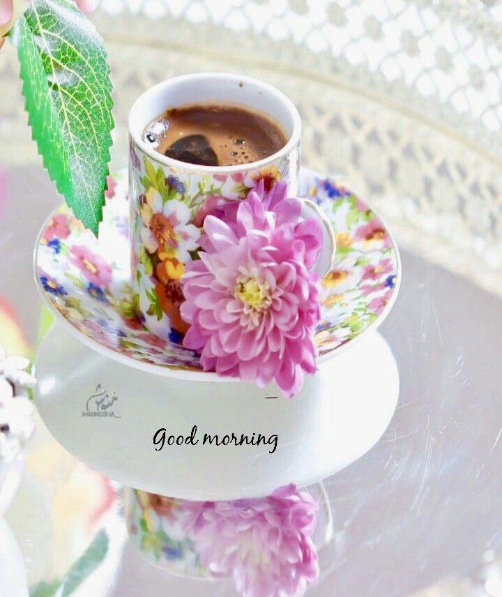 Good morning flowers hd whatsapp