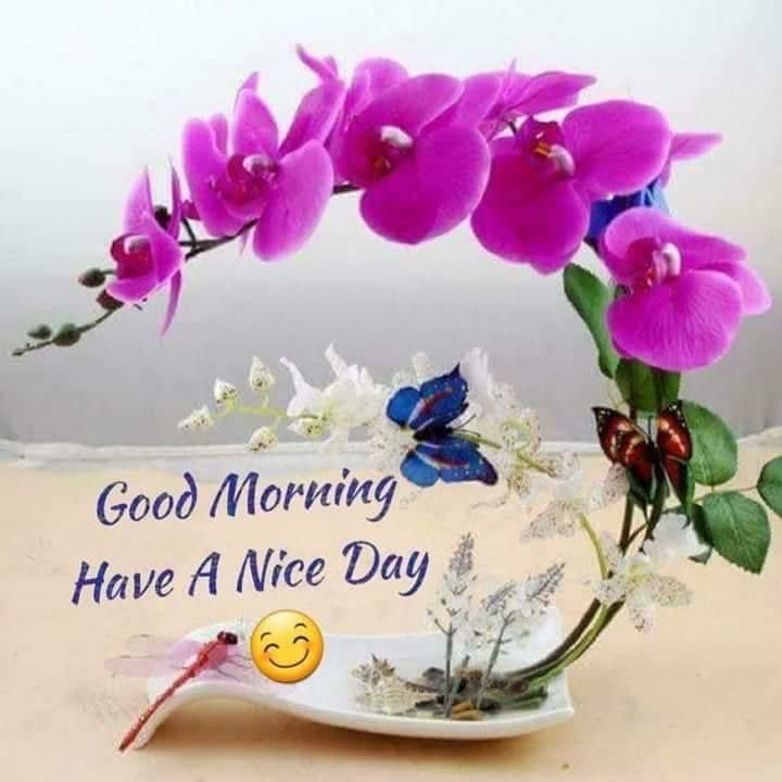 Good morning love  how are you