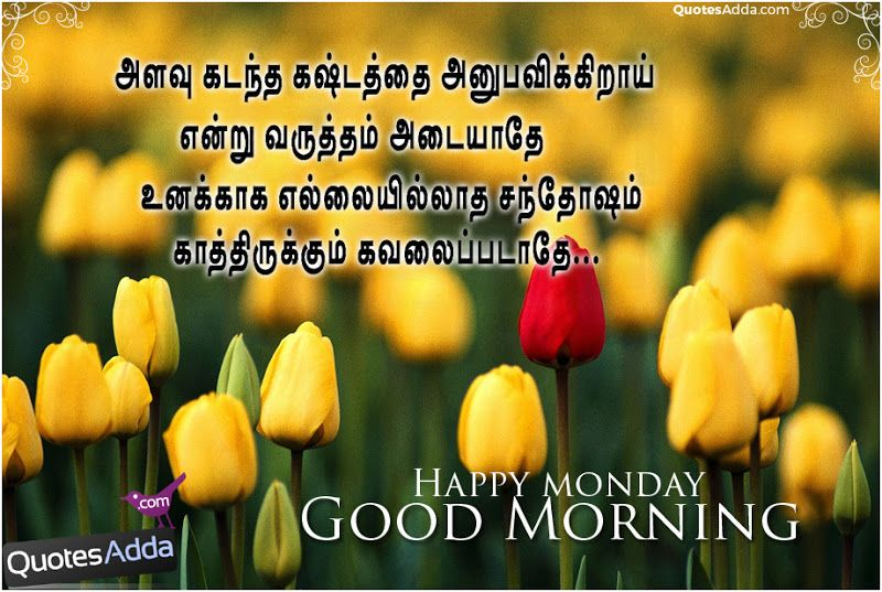 Good morning  Monday  images   tamil