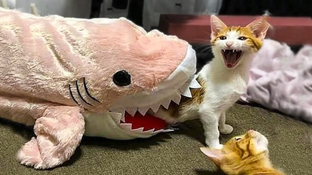 Funny pictures of animals in Halloween costumes