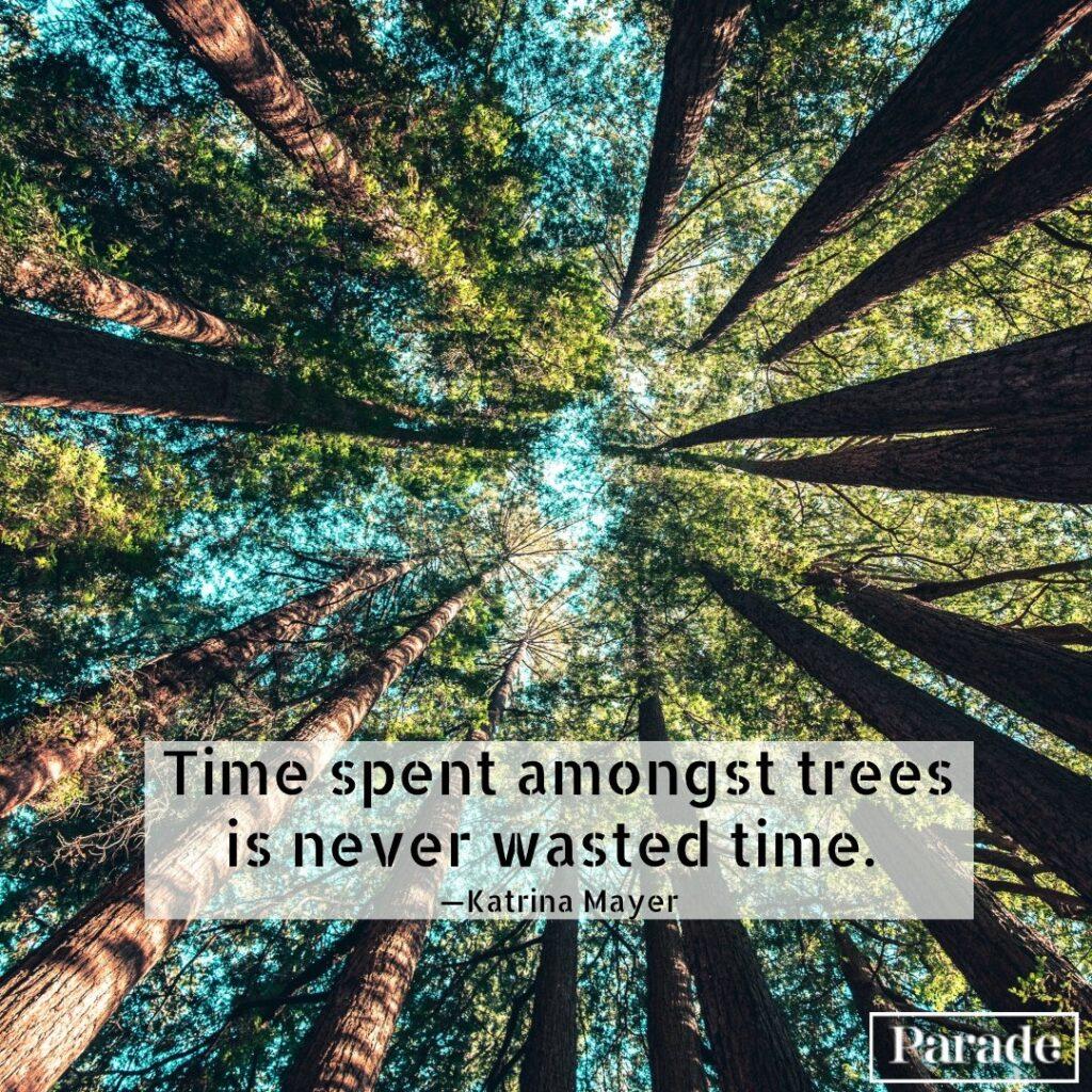 Short quotes nature