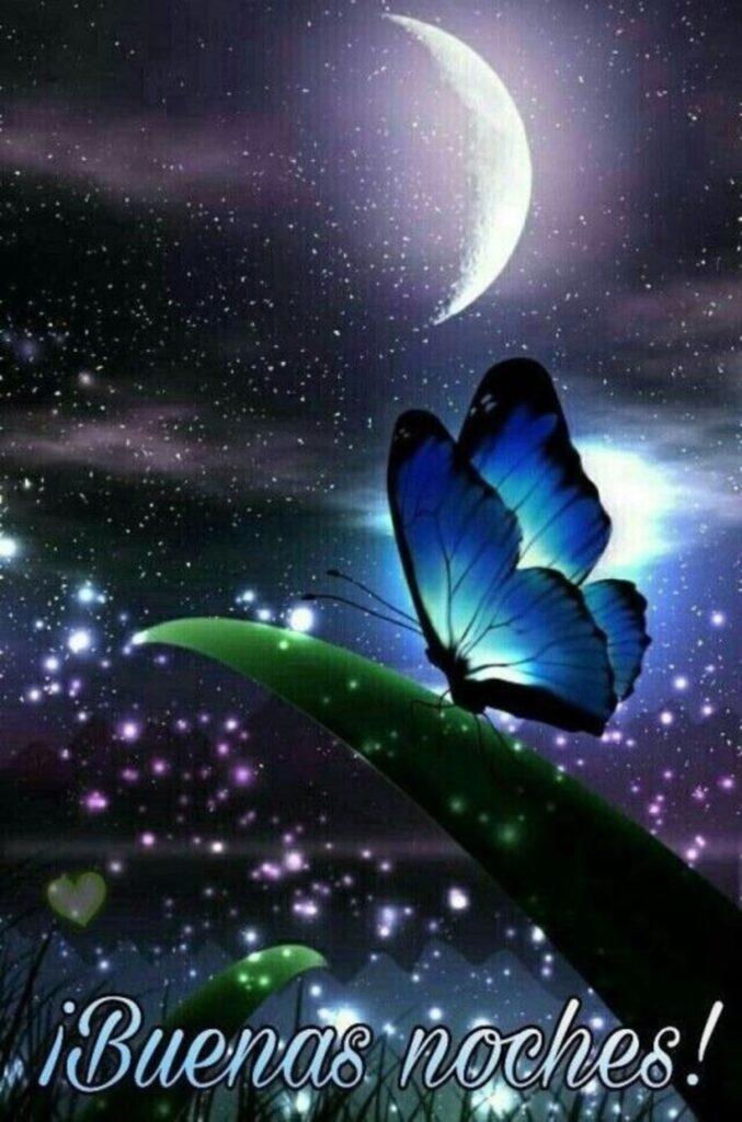que-tengas-una-linda-noche