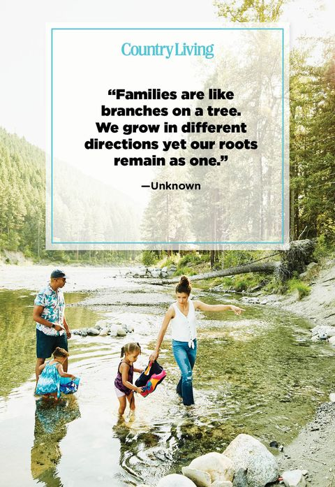 Family quotes goodreads